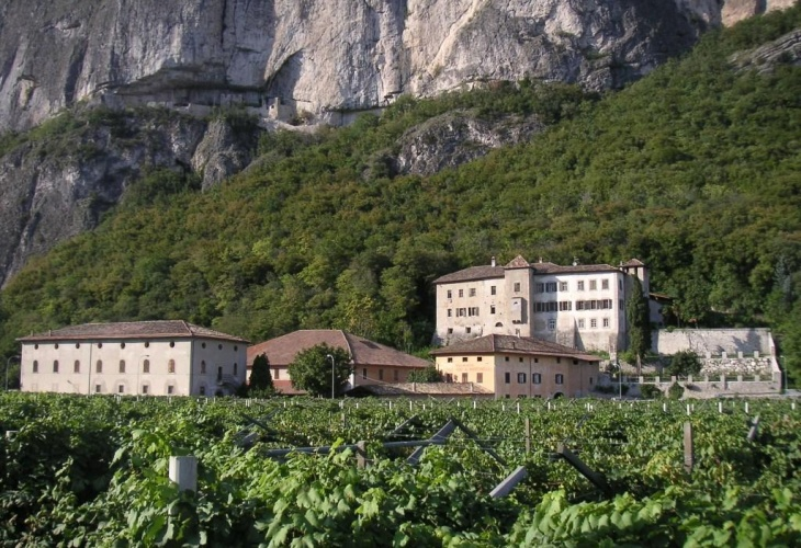 Image result for cantina martinelli